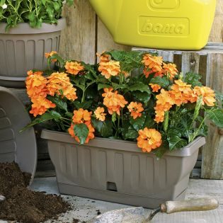 30190  Balcony Flower Box